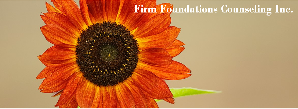 Firm Foundations Counseling Inc.